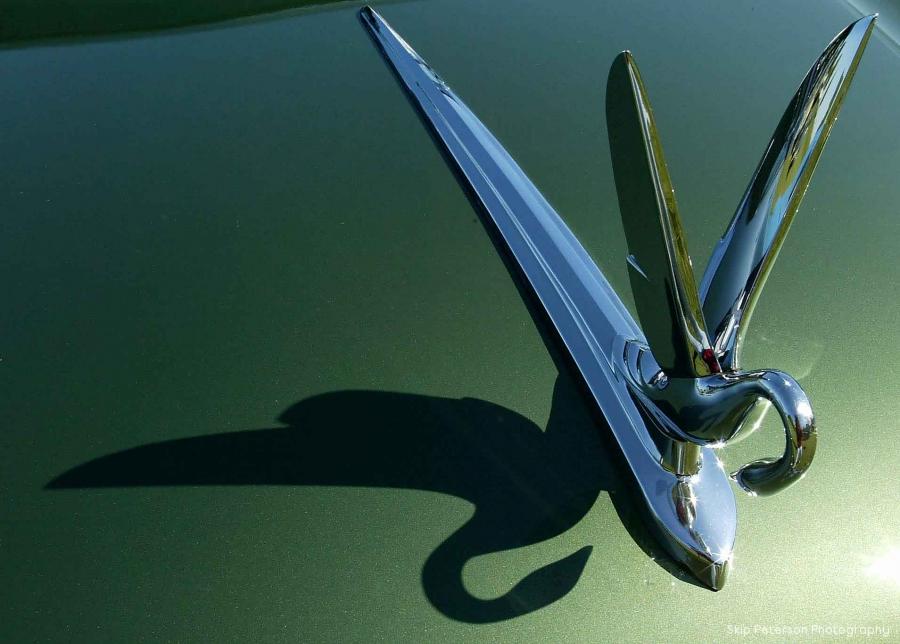 51 Packard Cormorant